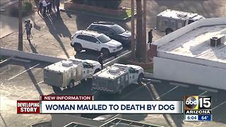Woman mauled by dog at Phoenix boarding facility - Video