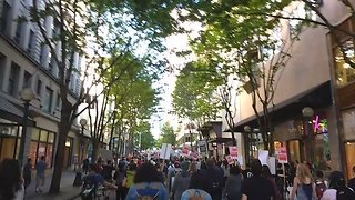 Seattle Protesters Chant Charleena Lyles' Name - Video