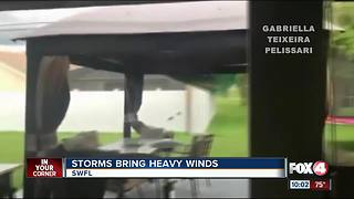 Strong winds cause issues in Lee County Tuesday night