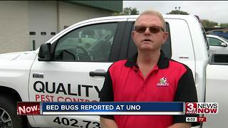 UNO investigates possible bed bug report 6pm - Video