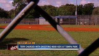 Teen charged with shooting near kids at Tampa park - Video