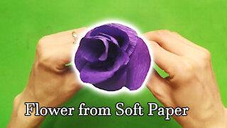 How to make flower from soft paper | BDIY