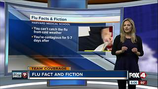 Flu Fact and Fiction - Video