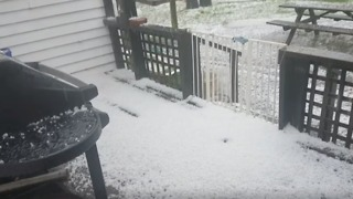 Hail Blankets Parts of Auckland Like Snow - Video