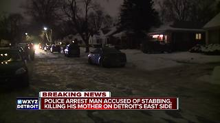 Deadly stabbing involving mother and son - Video