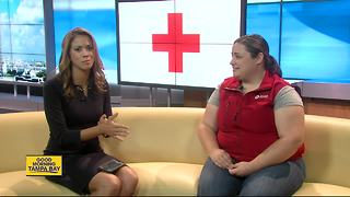 American Red Cross assisting 4,000 plus Floridians still in shelters - Video