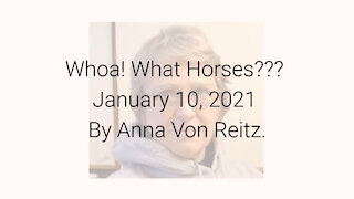 Whoa! What Horses??? January 10, 2021 By Anna Von Reitz