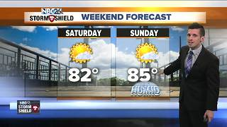 Warm and bright weekend - Video