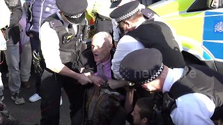 Fifteen arrested at environment protest in London
