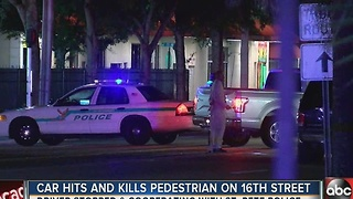St. Pete Police investigate fatal pedestrian crash, witnesses say pedestrian appeared impaired - Video