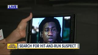 Investigators search for driver after deadly hit-and-run - Video
