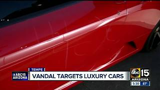 High end vehicles vandalized at Tempe car dealership - Video