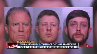 Tampa attorney accused of cocaine trafficking - Video