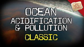 Stuff They Don't Want You To Know: Ocean Acidification and Pollution - CLASSIC