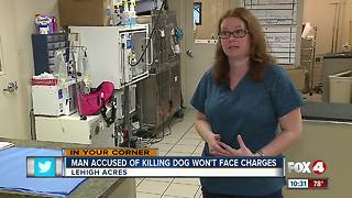 Man accused of killing girlfriend's dog will not be prosecuted - Video