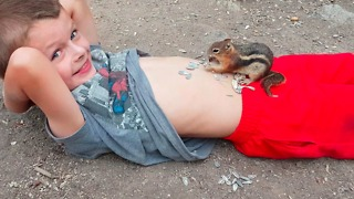 A Little Boy Lets A Squirrel Eat Sunflower Seeds Off Of His Belly - Video