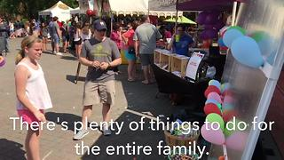 Main Street Festival Held In Franklin - Video