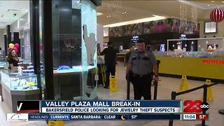 Valley Plaza Mall Break-in