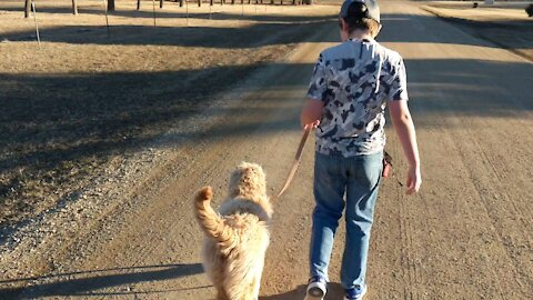 Learning to Walk with Lucy