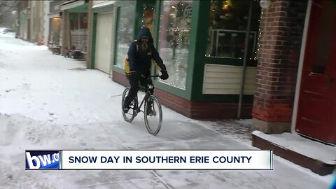 Snow day in Southern Erie County