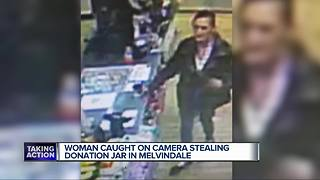 Woman caught on camera stealing donation box meant to help Downriver animals - Video