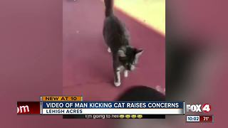 Man posts video of kicking cat on Snapchat - Video