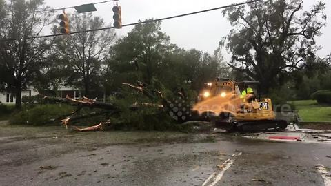 Loader pushes massive downed tree out of street after Florence