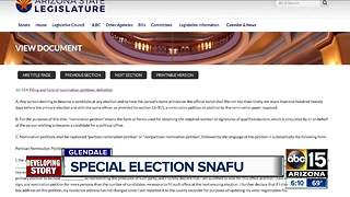 Clerical error nearly disrupted local election - Video