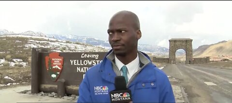 TRENDING: Reporter bails live shot after seeing bison