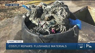 Costly Repairs: Think Before You Flush