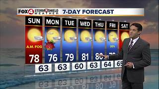 7 Day Forecast - Video