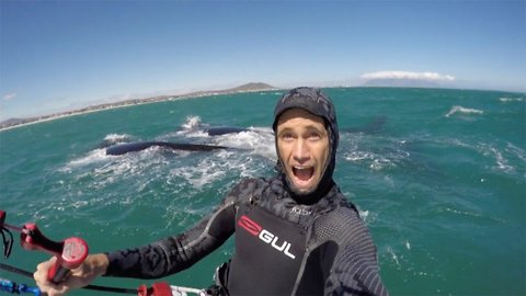 Incredible moment kiteboarder is joined by family of whales
