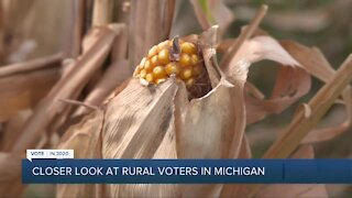 Closer look at rural voters in Michigan
