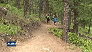 Genesee Park trail temporarily closed after mountain lion fight leaves 1 animal dead, 1 injured