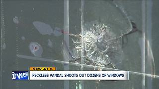 Bainbridge residents on edge after nearly 20 homes have windows shot by pellets - Video