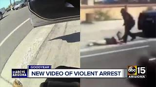 Body camera video of viral Goodyear arrest released