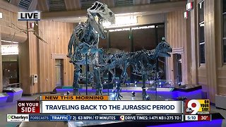 Natural history museum: Union Terminal reopens Saturday - Video