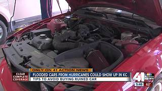 Flooded cars from hurricanes could show up in KC - Video