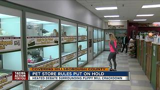 New proposed crackdown on Hillsborough County pet stores - Video
