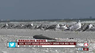 Governor Scott declares state of emergency due to red tide in Florida - Video