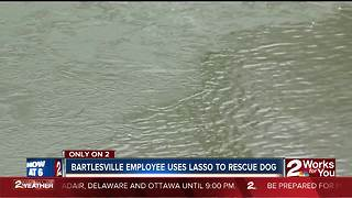 Bartlesville employee saves dog from icy river - Video
