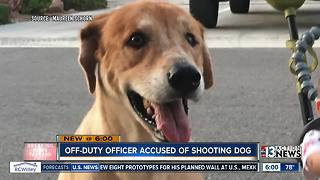 Off-duty officer shoots and kills dog in attack - Video