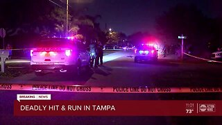 Bicyclist hit, killed by vehicle in Tampa, driver returns to scene, police say