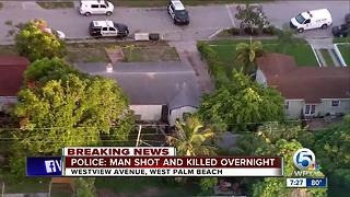 Overnight homicide investigated on Westview Avenue in West Palm Beach - Video
