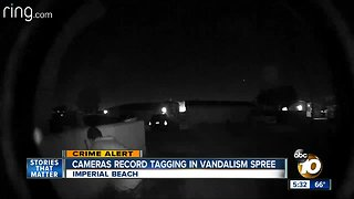 Cameras record tagging in Imperial Beach vandalism spree