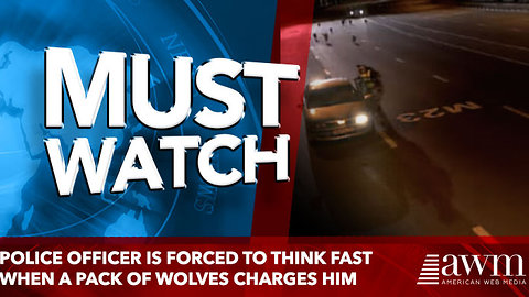 Police Officer Is Forced To Think Fast When A Pack Of Wolves Charges Him