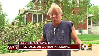 Strong winds knock down trees, power lines across Tri-State - Video