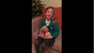 Little girl overwhelmed by new puppy surprise - Video