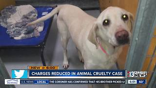 Felony charges reduced in animal cruelty case - Video