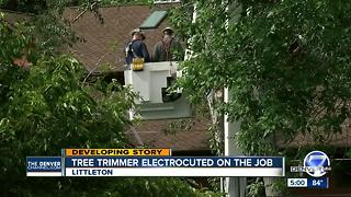 Arborist electrocuted in Littleton tree, power shut off to recover body - Video